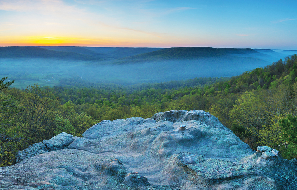 Skinner Mountain in Fentress County, TN, sits in the Cumberland Plateau and is part of the largest stretch of contiguous forest in the Appalachians.